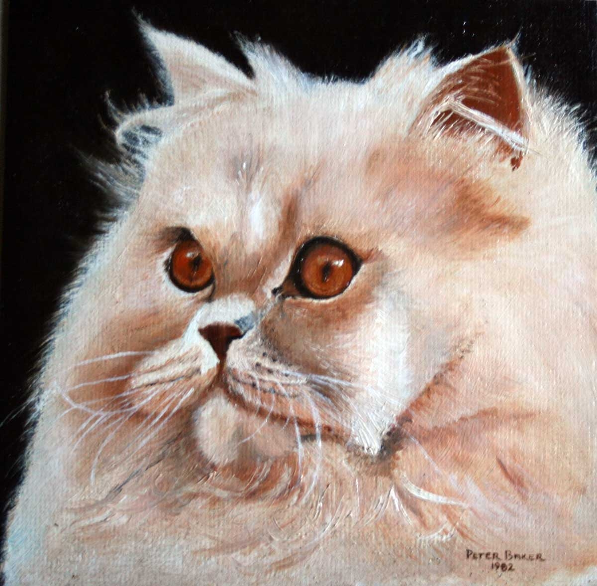 Honey (persian), 20 x 20cms, Oil on Board